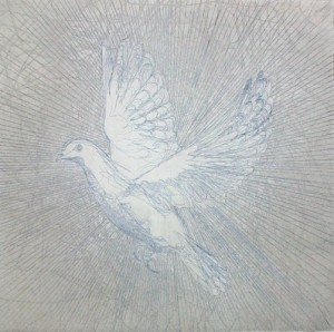 Serenity - 2010 etching bird dove Louisa Boyd