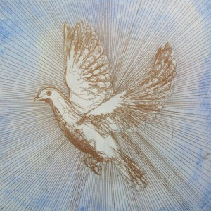 Harmonious - 2010 etching bird dove Louisa Boyd