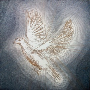 Radiant - 2010 etching bird dove Louisa Boyd